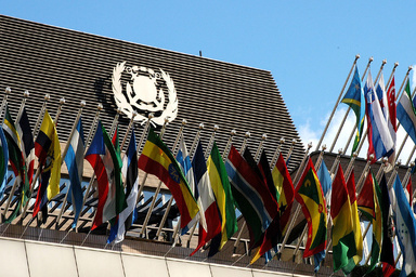 IMO Assembly elects new 40-Member Council