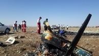 علت سانحه سقوط هواپیما به محض مشخص شدن اعلام میشود
