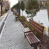 آسیبشناسی پیادهروی در تهران