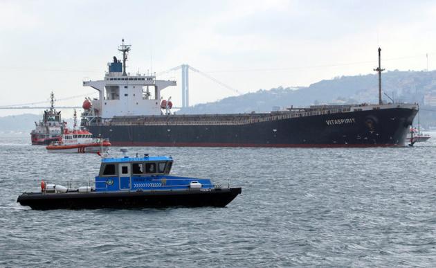 Bosporus Strait Bulker Crash Hits Barley Supply to Top Buyer