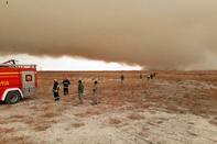 محیط زیست استان مرکزی: مهار آتش تالاب میقان امکانپذیر نیست / درخواست بالگرد و هواپیما از تهران