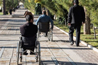 شبکه حمل ونقل ویژه معلولان ایجادشود