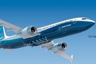 نقش هواپیما در کارزار انتخابات آمریکا