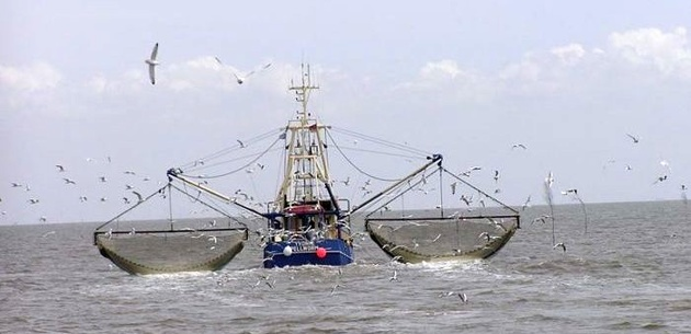 Sudden sinking of fishing vessel highlights need of wearing PFDs