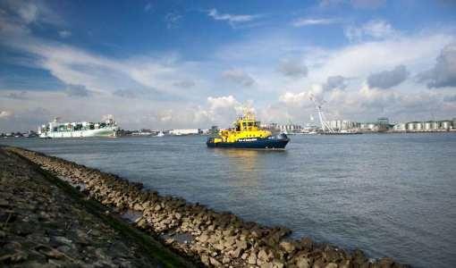 Shipping Companies' Alliances Stir Fear Among Farmers