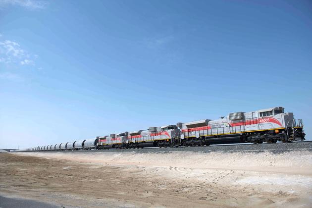 Etihad Rail begins wildlife relocation in Misanad