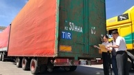 Historic moment for China-Eurasia trade with first TIR transits