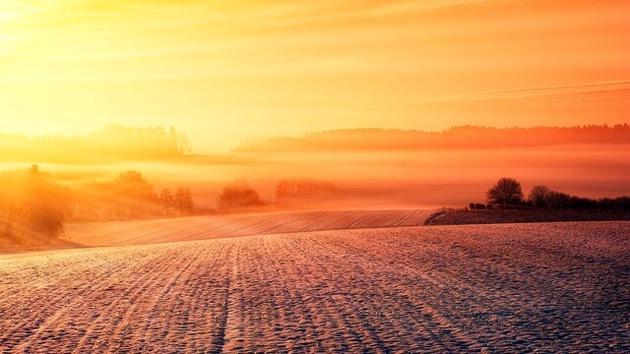 گرمایش جهانی عامل مهم مرگ و میر ناشی از گرما است