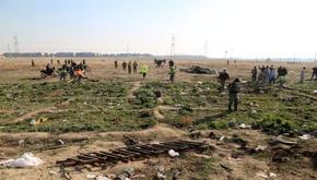 روایت هولناک از لحظات اولیه سقوط هواپیما: از آسمان جنازه میبارید