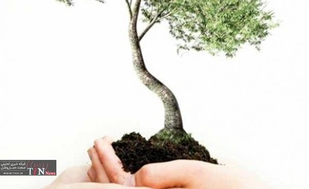 کاشت ۸۰۰ هزار درخت در تهران با مشارکت مردم