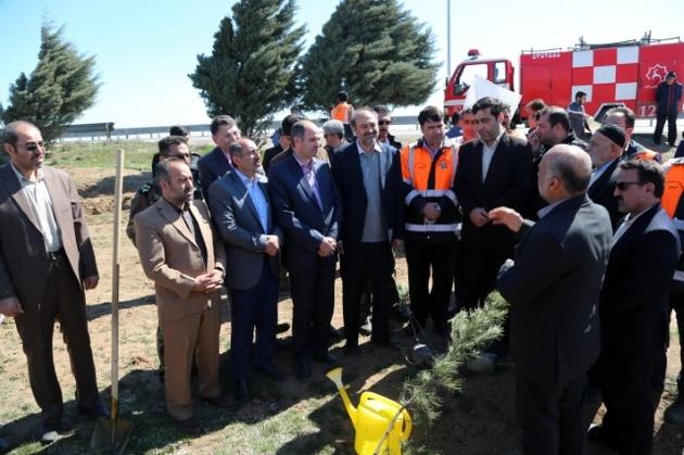 نهال کاری 15 کیلومتر از حاشیه محور آزاد راه قزوین- زنجان
