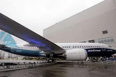 بوئینگ ۷۳۷ مکس پس از ۲۰ ماه دوباره پرواز کرد