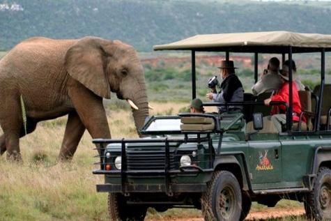 ◄ تغییرات آبوهوایی، گردشگری و توسعه اقتصاد محلی در آفریقای جنوبی