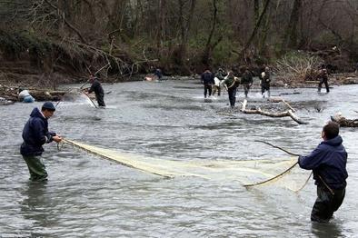 کرونا صید ماهی در رودخانه مرزی آستارا را تعطیل کرد