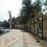نخستین دیوار زنده شهر همدان ساخته شد