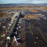 Oslo Airport's fish freight volumes are flying