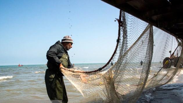 اجرایی شدن چهار پروژه شیلات در خوزستان