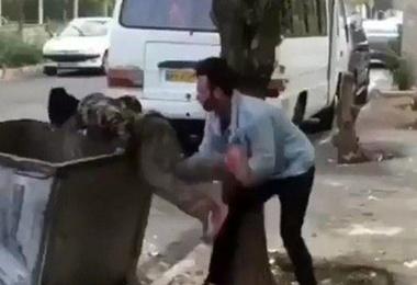 واکنش کاربران شبکههای اجتماعی به پرتاب یک کودک کار به سطل زباله: شوک یک قهقهه + فیلم