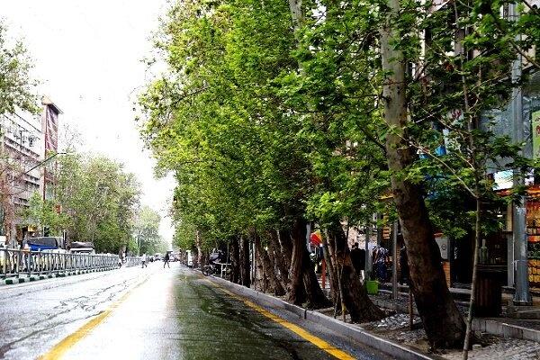خیابان ولیعصر ثبت جهانی می شود