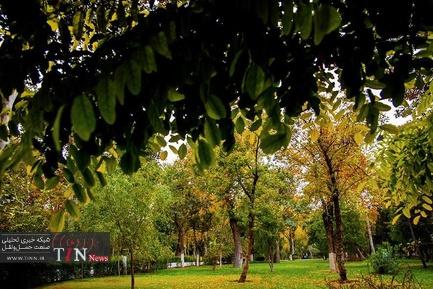 پاییز در تهران