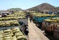 فیلم  صادرات سیب زمینی و پیاز از مرز پرویزخان