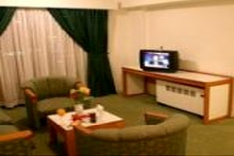 صنعت هتلداری با ایجاد زیر ساخت های لازم امکان پذیر خواهد بود