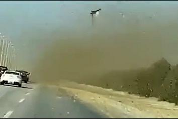فیلم  حمله ملخها به یک جاده